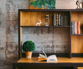 Books on the bookshelf with green plants Stock Photo