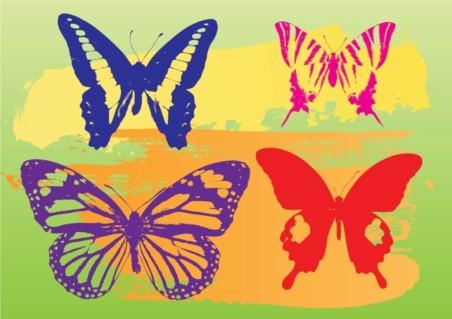 Butterflies Graphics vector