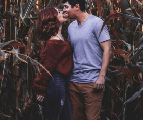 Couple taking photos in corn field Stock Photo