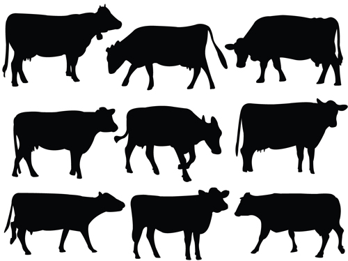Cows and Bulls silhouette 2 vector