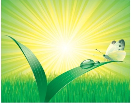 Early in morning with dew on grass vector design
