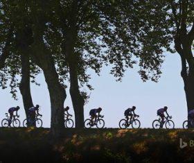 Endurance cycling race Stock Photo