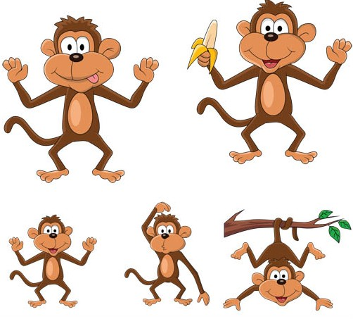 Funny monkey pictures images free download