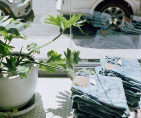 Green plants and stacking good pair of jeans Stock Photo