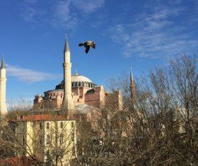 Hagia Sophia Istanbul Turkey Stock Photo 03