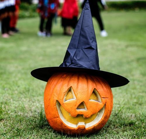 Halloween funny pumpkin lights Stock Photo 01