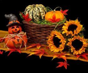 Halloween funny pumpkin lights Stock Photo 04