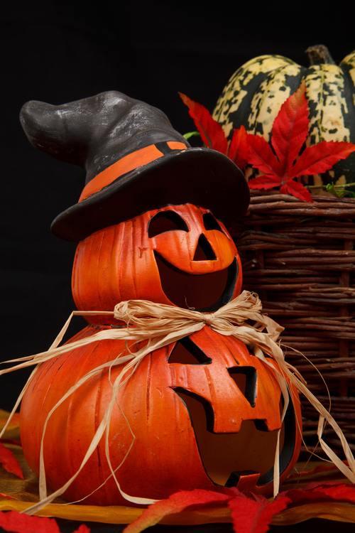 Halloween funny pumpkin lights Stock Photo 05