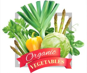 Organic vegetable with white background vector