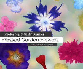 Pressed Garden Flowers Photoshop Brushes