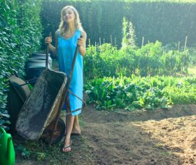 Pushing wheelbarrow woman Stock Photo