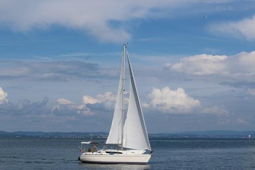 Small sailing boat at sea Stock Photo 08