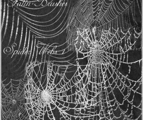 Spider Web Photoshop Brushes