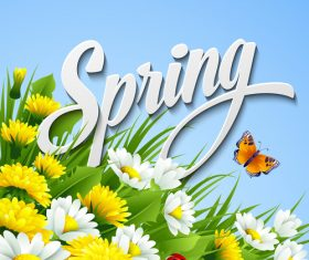 Spring flower with blue background vector