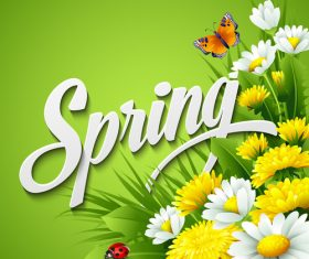 Spring flower with green background vector 01