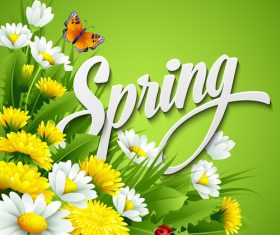 Spring flower with green background vector 02