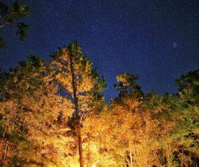 Stock Photo Camping night