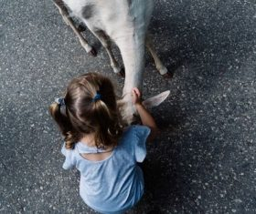 Stock Photo Little girl petting a goat