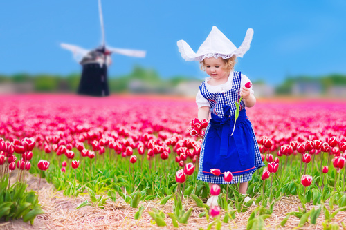 Stock Photo Little girl standing in front of pink flower field