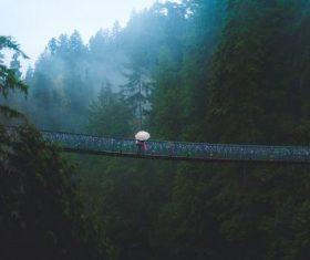 Stock Photo Suspension bridge in the mountains