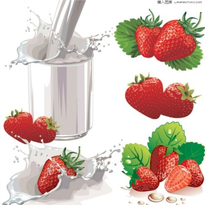 Strawberry with milk vector