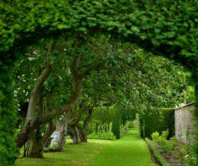 United Kingdom Howard manors scenery Stock Photo 07