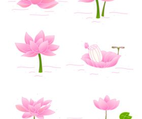 Vector hand drawn lotus flower illustration