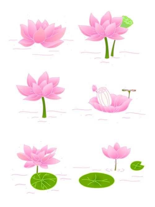 Vector Hand Drawn Lotus Flower Illustration Free Download