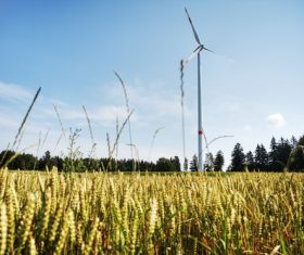 Wind turbines in the fields Stock Photo 04