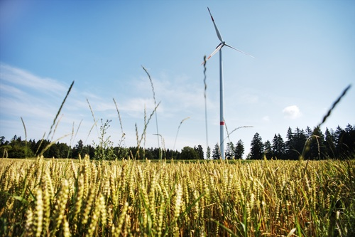 Wind turbines in the fields Stock Photo 04