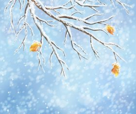Winter cold christmas background vectors set 07