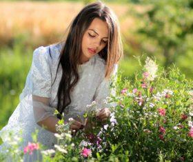 Woman picking wild flowers Stock Photo
