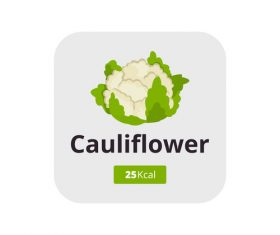 cauliflower vector icon