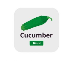 cucumber vector icon