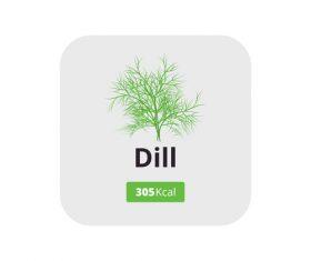 dill vector icon