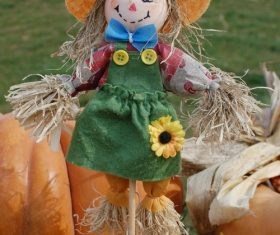 scarecrow Stock Photo 01
