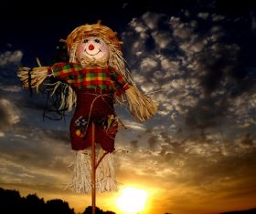 scarecrow Stock Photo 04