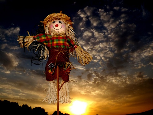 scarecrow Stock Photo 04