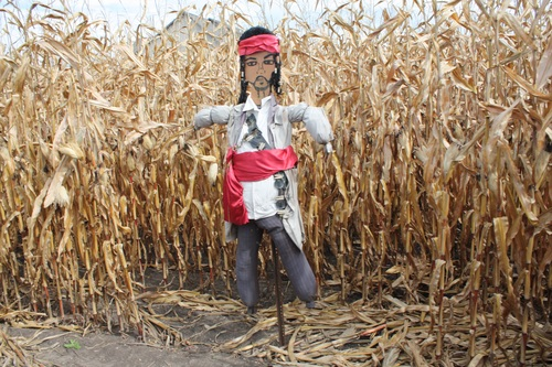 scarecrow Stock Photo 06