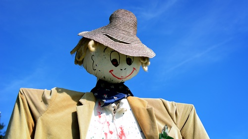 scarecrow Stock Photo 08