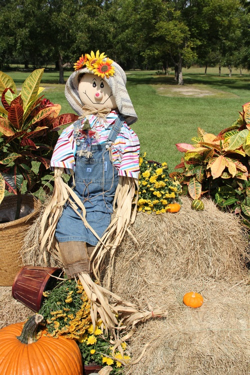 scarecrow Stock Photo 09