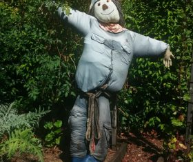 scarecrow Stock Photo 10
