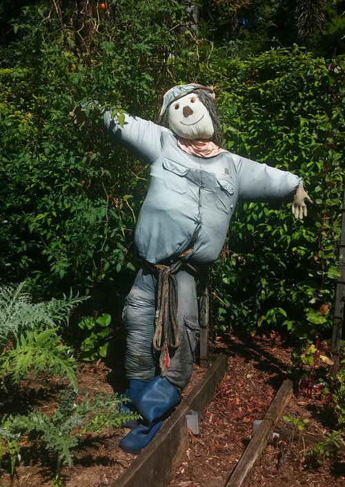 scarecrow Stock Photo 10
