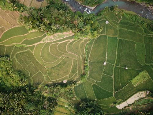 Aerial photography farmland Stock Photo 01