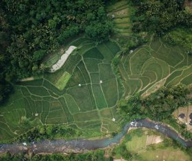 Aerial photography farmland Stock Photo 02