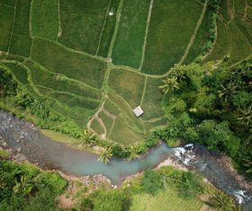 Aerial photography farmland Stock Photo 03