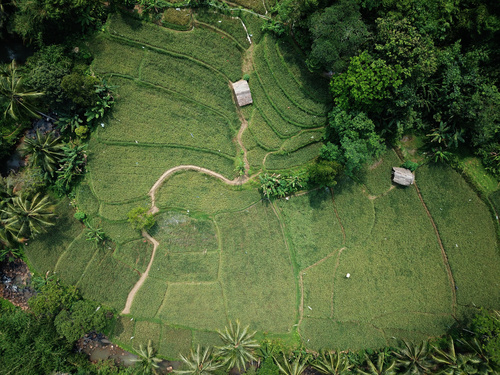 Aerial photography farmland Stock Photo 04