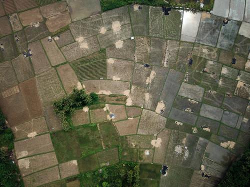 Aerial photography farmland Stock Photo 05