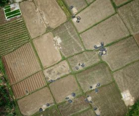 Aerial photography farmland Stock Photo 07