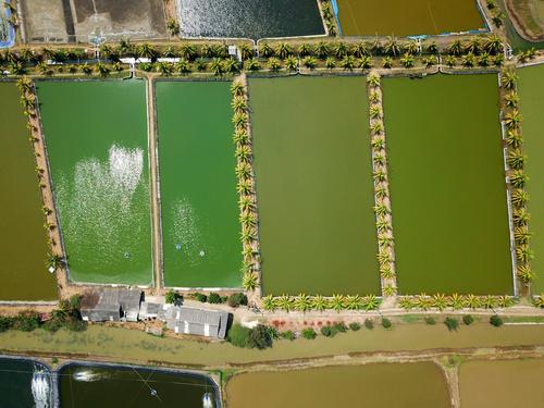 Aerial photography farmland Stock Photo 08